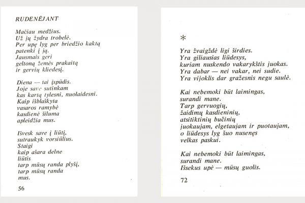 Kulvos krašto poetės Audros Stasiukonytės biografija